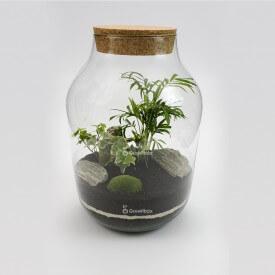 DIY - las w słoiku sloj z korkiem bluszcz kora, growitbox