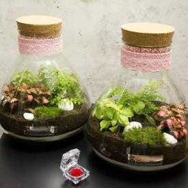 Vase jar 31 cm with a cork lid Glass jars