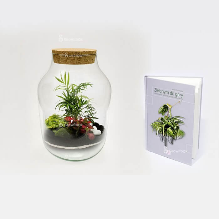 """Palm set2 37cm jar with the guide """"Green up"""" Forest in a jar DIY kits"""
