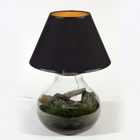 Rybkadesign Lamp - forest hill Home