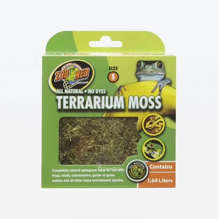 Terrarium Moss - mech do terrarium Strona główna