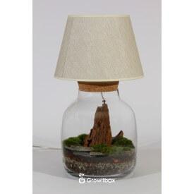 Rybkadesign Lamp - root Home