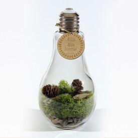 copy of glass light bulb Wedding