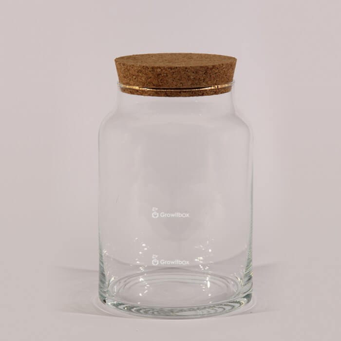 "Vase jar 24 cm ""Bullet"" with a cork lid Home"