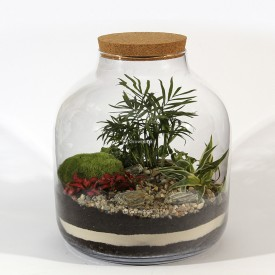 "Jar 38cm ""keg"" Composition Palm set DIY forest in a jar DIY kits"
