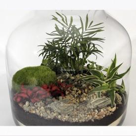 """Jar 38cm """"keg"""" Composition Palm set DIY forest in a jar DIY kits"""