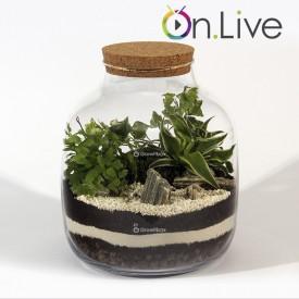Warsztaty online Zielony słój 30cm las w słoiku growitbox Warsztaty