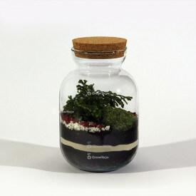 Set von 24cm mit Gabelstapler Wald in einem Glas DIY