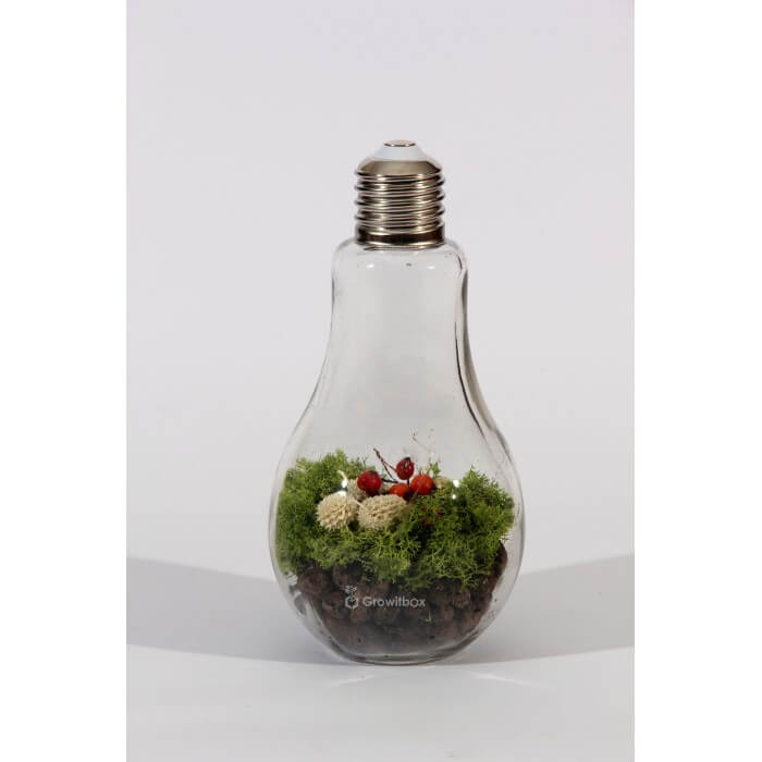 Bulb 23cm with white cones Home
