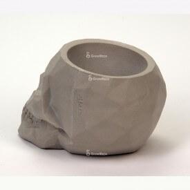 Gray 3D skull Concrete decorations