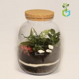 Warsztaty online las w słoiku growitbox Warsztaty