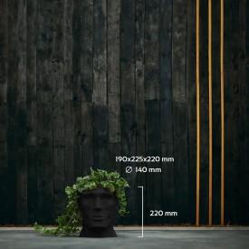 Black APOLLO Concrete decorations
