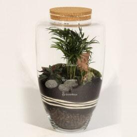 Glas 45cm Palme mit Syngonium und vulkanischer Lava Wald in einem Glas DIY
