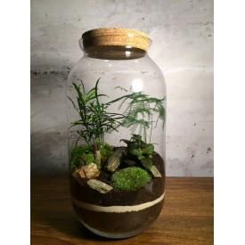 Vase jar 42 cm with a cork lid Glass jars