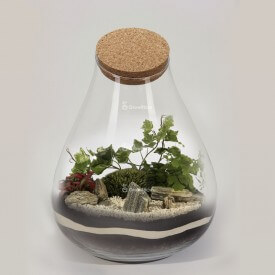 "DIY set ""Barcelona"" 37cm Fern jar Forest in a jar DIY kits"