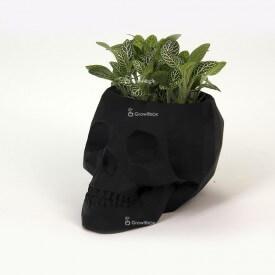 Schwarzer 3D-Schädel mit grüner Phytonia Betondekoration