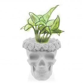 Crâne blanc en 3D avec des fleurs Décorations en béton