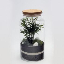 Glas 35cm Palme, Efeu grün set2 DIY Wald im Glas DIY Wald im Glas