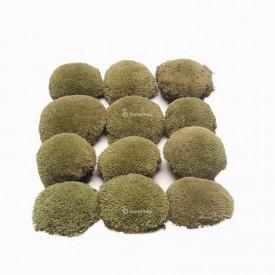 Pillow moss light green Mech preparowany