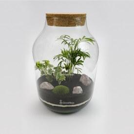 37cm jar palm ivy white cherry Forest in a jar DIY kits