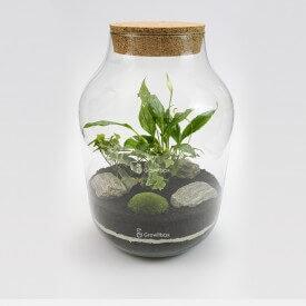 Glas 37cm Schachtelhalm Efeu weiß mit Rinde Wald in einem Glas DIY