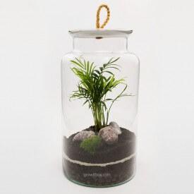 Jar 35cm Palm with cherry stone DIY kits