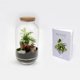 """Kit de palmeras con el tutorial """"Green Up"""" Forest en un tarro DIY"""