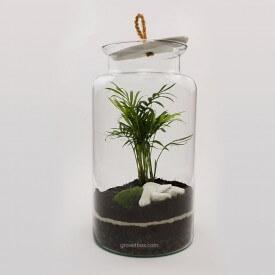 Jar 35cm Palm with macedonian stone DIY kits