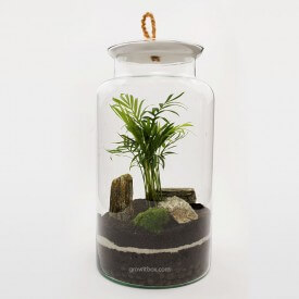 Jar 35cm Palm with stone bark DIY kits