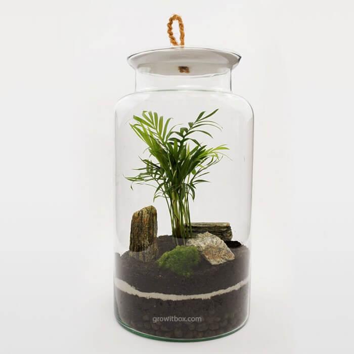 Słój 35cm palmowy z korą Zestawy DIY