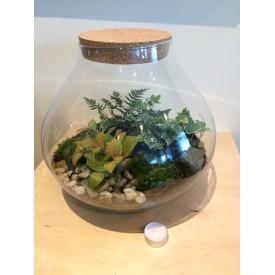 Vase jar 30 cm drop with cork lid Glass jars