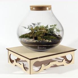 Eco stolik growitbox Strona główna