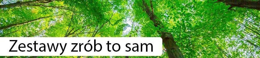 Kits forestiers en bocal - growitbox.com
