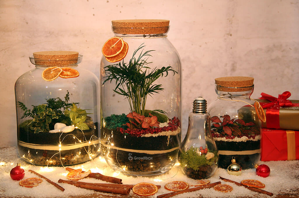 Christmas forest sets in a jar